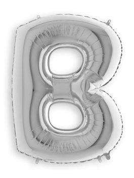 SILVER B (3FT)